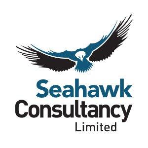 Seahawk Consultancy Logo Design